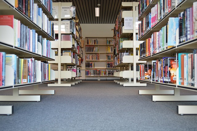 本のために広い部屋を借りて貧乏になる話