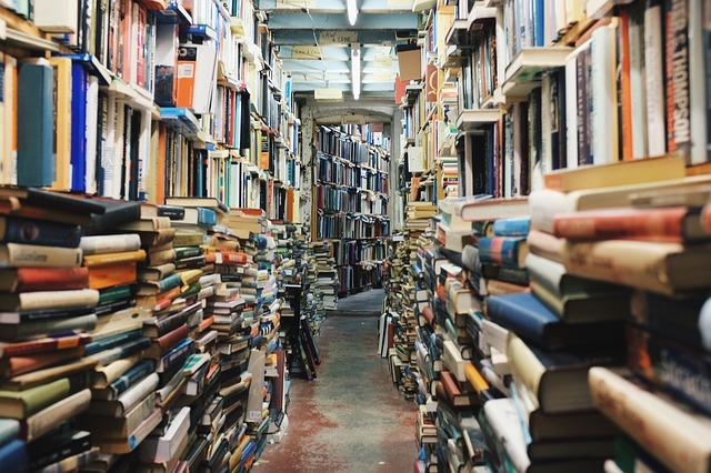 本棚は虫の住み家!紙の本の衛生面に注意