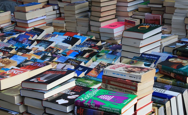 電子書籍で稼ぐためには数多く出版する