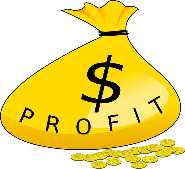 【電子書籍で稼げる金額は?】KDPの収入を公開しているサイトまとめ
